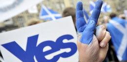 Szkoci oderwą się od Królestwa? Głosowanie już się zakończyło
