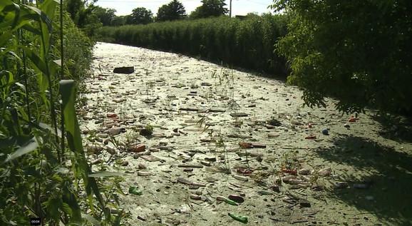 Leglo zaraza u kanalu Kalovita