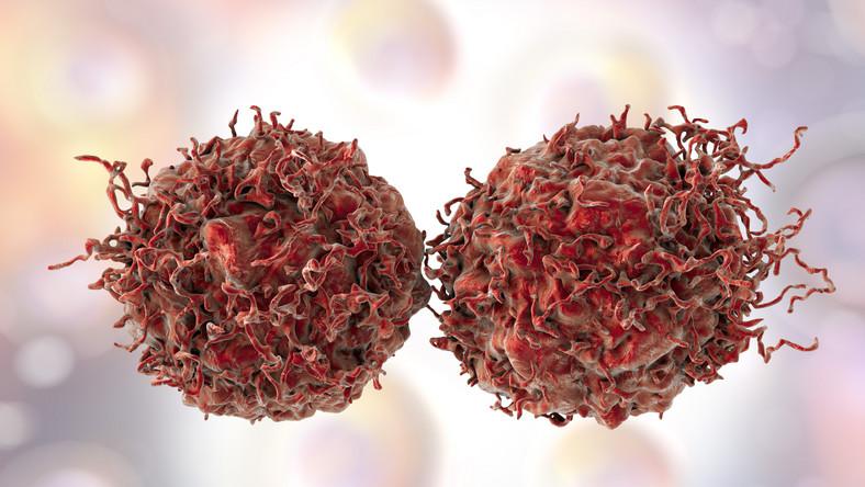 Komórki rakowe, rak prostaty