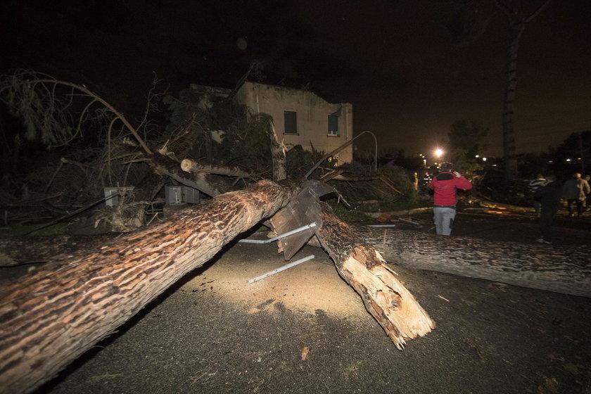 Drzewa w Cesano łamały się jak zapałki