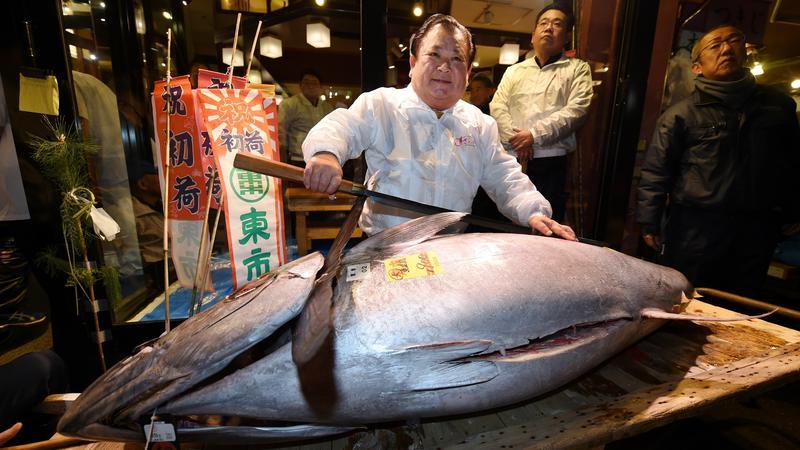 JAPAN-FOOD-AUCTION-TSUKIJI