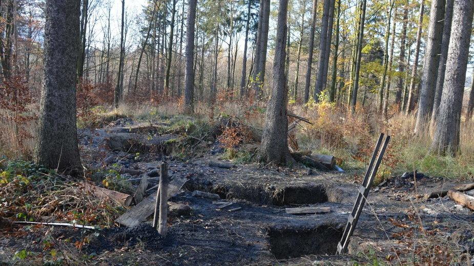Leśnicy ostrzegają przed niebezpieczeństwem. Chodzi o biedaszyby