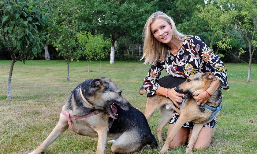 Joanna Krupa znalazła dom dla psów