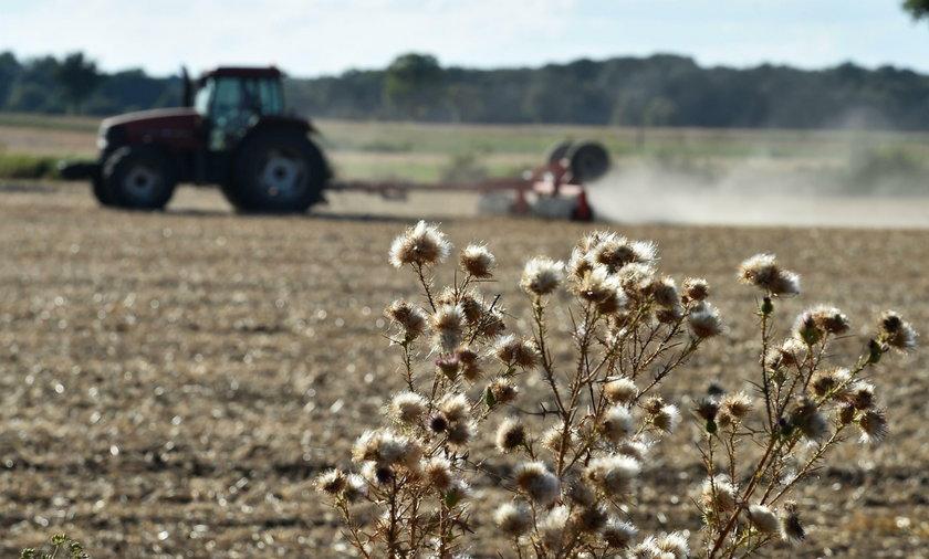 Dla rolników 800 milionów od rządu to mało. Mają swoje żądania