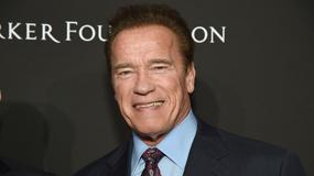 """""""Kung Fury"""": Arnold Schwarzenegger dołącza do obsady"""