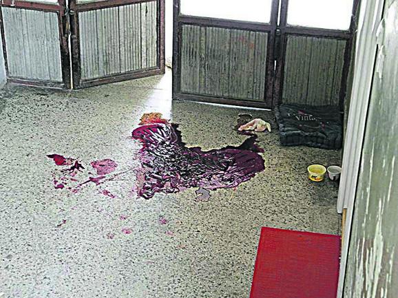 Lokva krvi u obliku srca ostala iza ubijenog brata