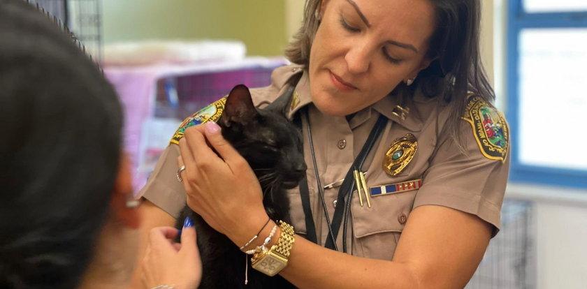 Ten kot przeżył katastrofę bloku w Miami i upadek z 9. piętra. Ile spośród swoich dziewięciu żyć musiał na to zużyć?