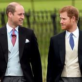 Potresna ispovest princa Harija: Priznao je javno da između njega i brata postoji JAZ