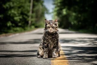 """Kinowe przeboje maja: """"Smętarz dla zwierzaków' i """"John Wick 3' [WIDEO]"""