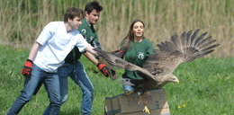 Włodarczyk wypuściła na wolność orła