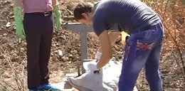 Horror! Grzybiarze znaleźli ludzkie szczątki