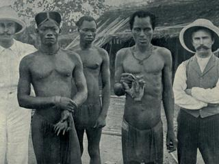 Atrocities of the Rubber Slavery in the Belgian Congo. Natives hold the severed hands of two country