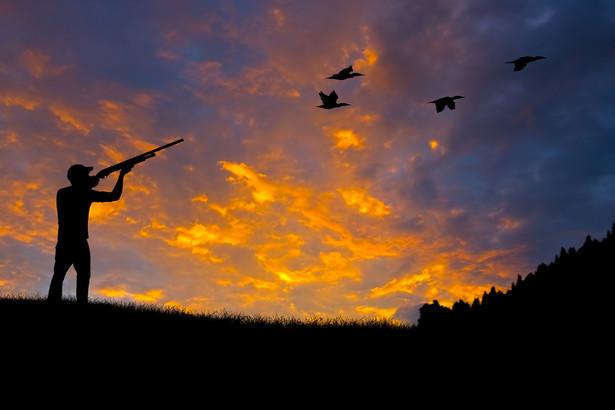 polowanie, myśliwy, myślistwo