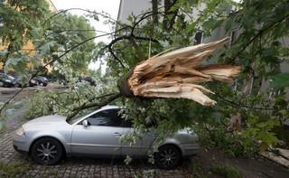 PSP: Ponad 16 tys. gospodarstw wciąż pozostaje bez prądu