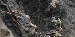 Ludzkie kości na placu budowy!