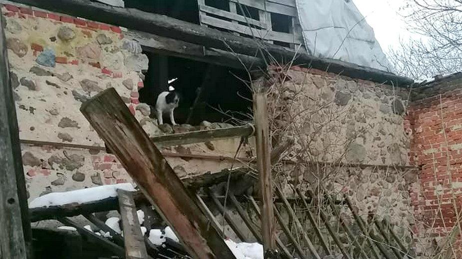 Pies utknął w stodole fot. OSP Bogdaniec