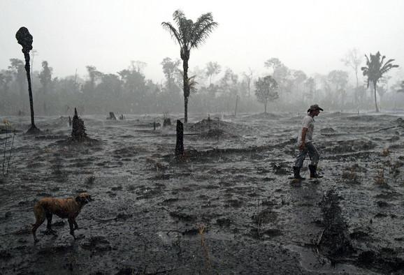 Zemlja se možda nikad neće oporaviti od gubitka amazonske prašume
