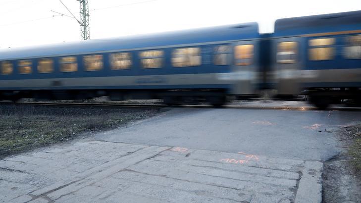 MÁV: május 17-én életbe lép az előszezoni menetrend / Fotó: Fuszek Gábor