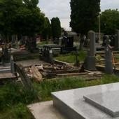 ŠOK NA GROBLJU KOD VUKOVARA Otvorili grobnicu u kojoj je sahranjena osoba koja je preminula davne 1945. i ostali SKAMENJENI (FOTO)