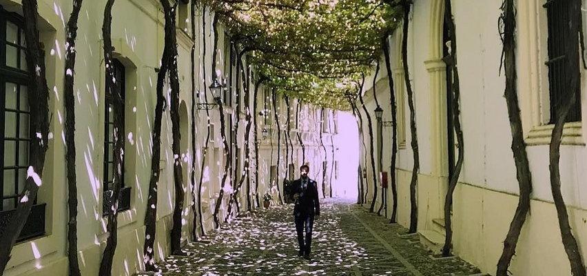 Kamienna ulica pod dachem z bluszczu. Szambelańska wypięknieje!