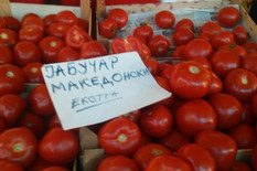 makedonski paradajz