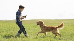 """Od """"Lassie"""" do """"Był sobie pies"""": najlepsze filmy z psami w roli głównej"""