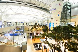 CPK trzeba porównywać z tym, jak wyglądało lotnisko Incheon na etapie planowania, a nie z tym, jak wygląda obecnie [WYWIAD]