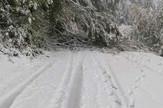 Golija, Sneg