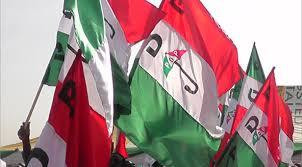PDP flags. (Punch)