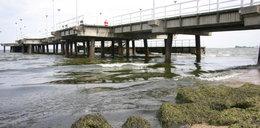 Zamknięte plaże w Gdyni! Alarm w Trójmieście