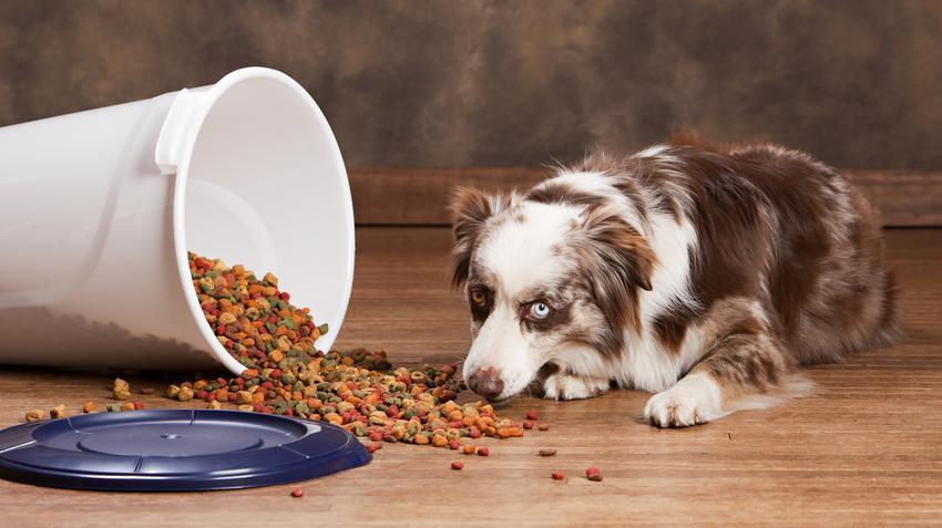 A téli diéta 5 alapszabálya, így lehet könnyen lefogyni