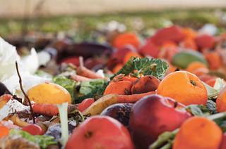 Nasz wspólny problem – marnowanie żywności