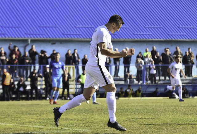 Nemanja Nikolić proslavlja vodeći gol