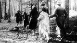 """""""Palmiry. Zabić wszystkich Polaków"""". Tak naprawdę brzmiał ten rozkaz. """"Ożywione"""" ofiary zbrodni dopominają się o pamięć"""