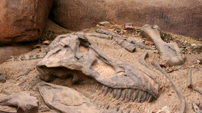 Karłowate dinozaury pochodzą z Europy