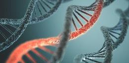 """Naukowcy """"mieszają"""" w genach"""