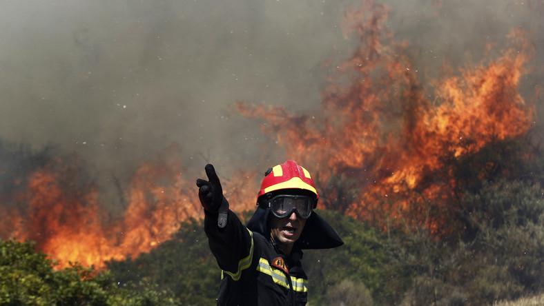 Lokalne władze wstępnie oszacowały, że ogień strawił 250 hektarów lasów i upraw rolnych. Pożar wybuchł w środę, z nieustalonych jeszcze przyczyn, na słynnej górze Athos