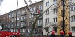 Drzewo wbiło się w blok