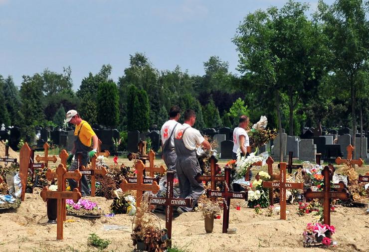 392686_novi-sad469-radnici-lisje-novo-groblje-gradsko-parcele-foto-robert-getel