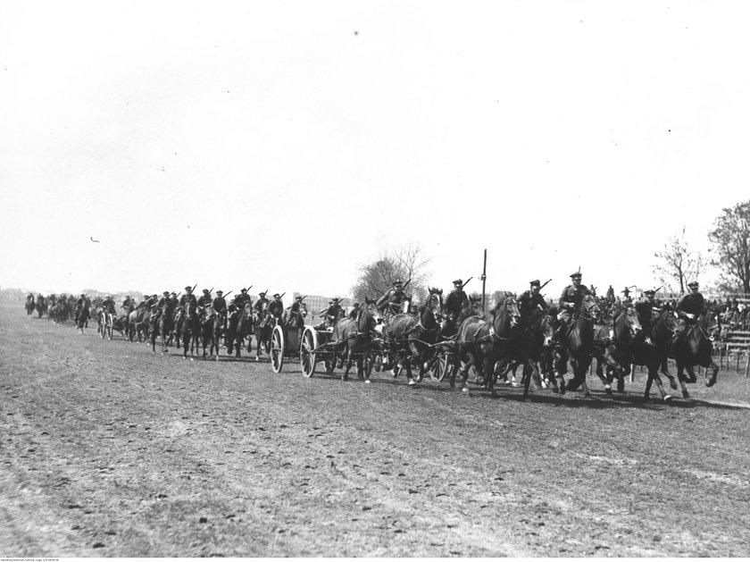 Wojsko wzięło w 1939 r. konia, to niech zapłaci