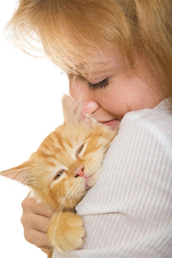 Poznato je da mačke uživaju u dodiru