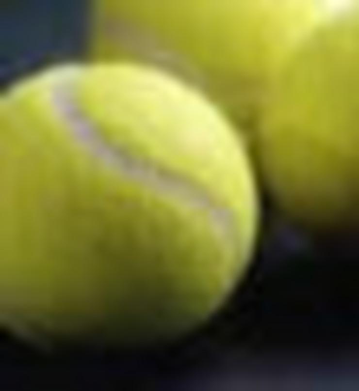 1370_tenism1