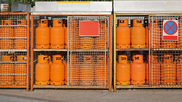 plin02 boce foto profimedia