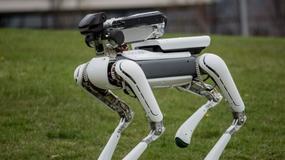 Japończycy nowym właścicielem Boston Dynamics