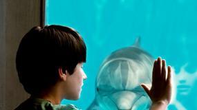 """""""Mój przyjaciel Delfin"""" na szczycie box office'u w USA"""