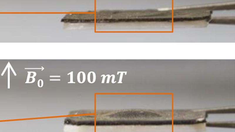 Technologia ustawianych magnetycznie wypustek