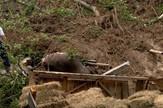 Preko noći klizište uništilo štale, usmrtilo stoku
