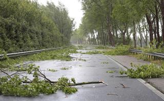 Odszkodowanie za szkody spowodowane przez burzę