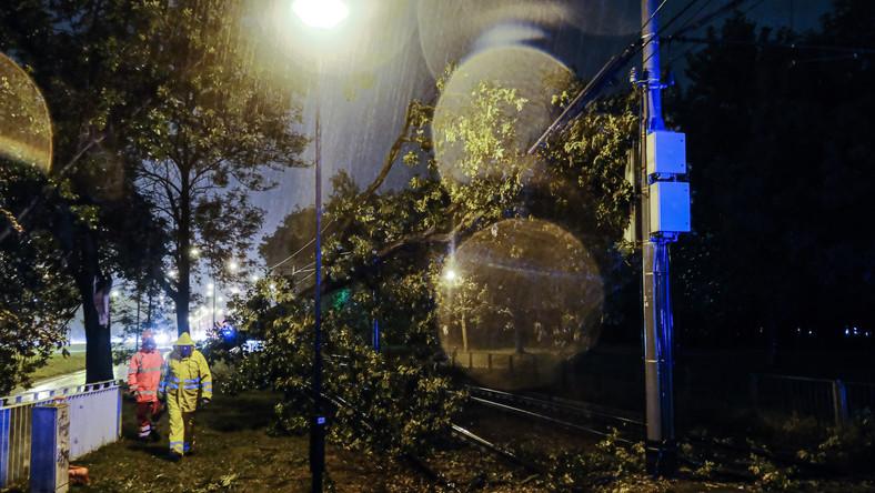 Warszawa, 30.08.2020. Drzewo spadło na tory tramwajowe na Woli, po gwałtownej burzy, która przeszła wieczorem nad Warszawą, 30 bm. (mr) PAP/Mateusz Marek