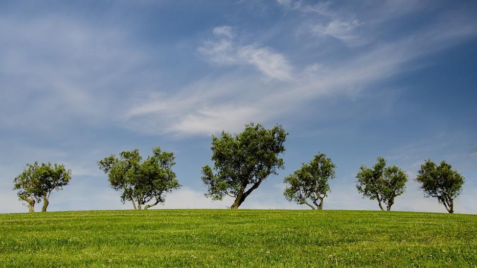 Kifogásolt a levegő minősége 16 településen / Fotó: Pixabay